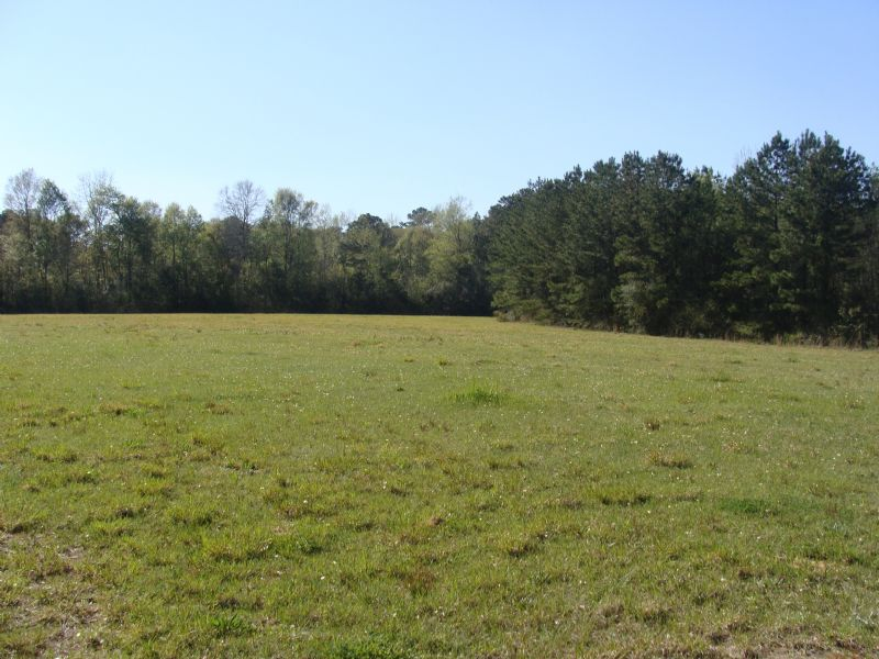 10 Acres - Centerville Road : Magnolia : Pike County : Mississippi
