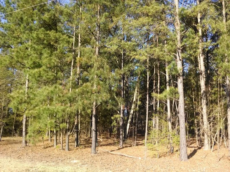 Private Home Site : Blythewood : Richland County : South Carolina