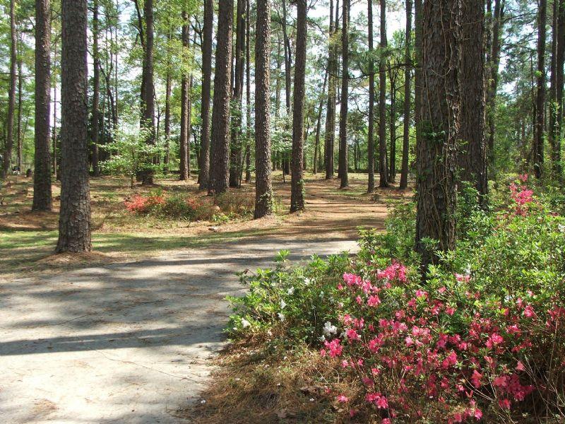 Boykin Place : Sylvania : Screven County : Georgia