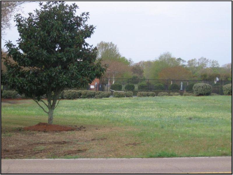 .71 Acres : Ridgeland : Madison County : Mississippi