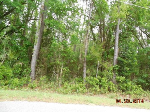 Government Seller - Bid Deposit : Perry : Taylor County : Florida