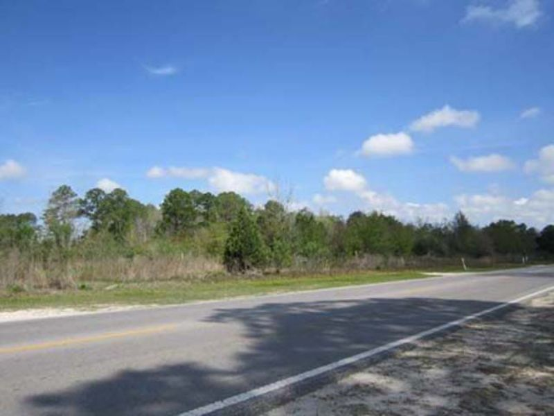Auction 255+/- Properties : Panama City : Bay County : Florida