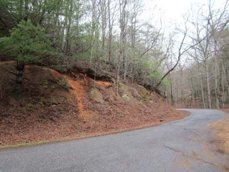 Auction - 255+/- Properties : Rabun Gap : Rabun County : Georgia