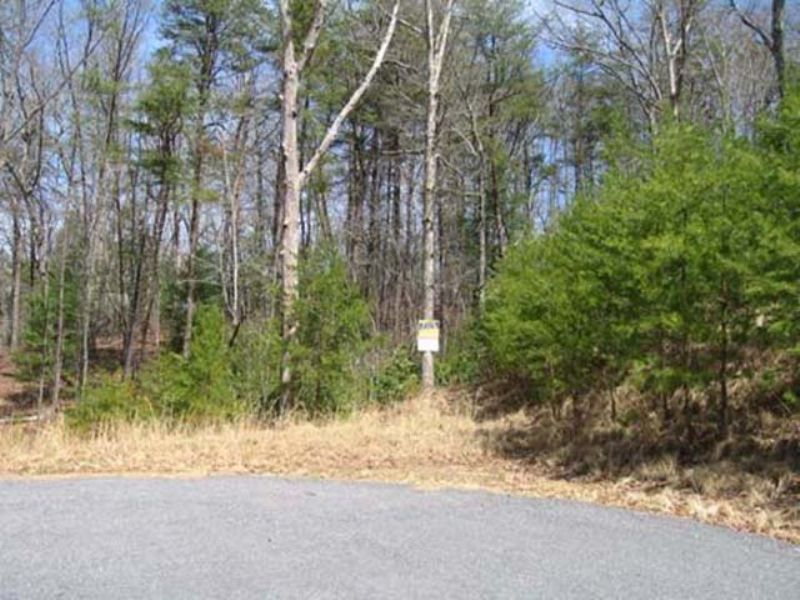 Auction - 255+/- Properties : Blairsville : Union County : Georgia