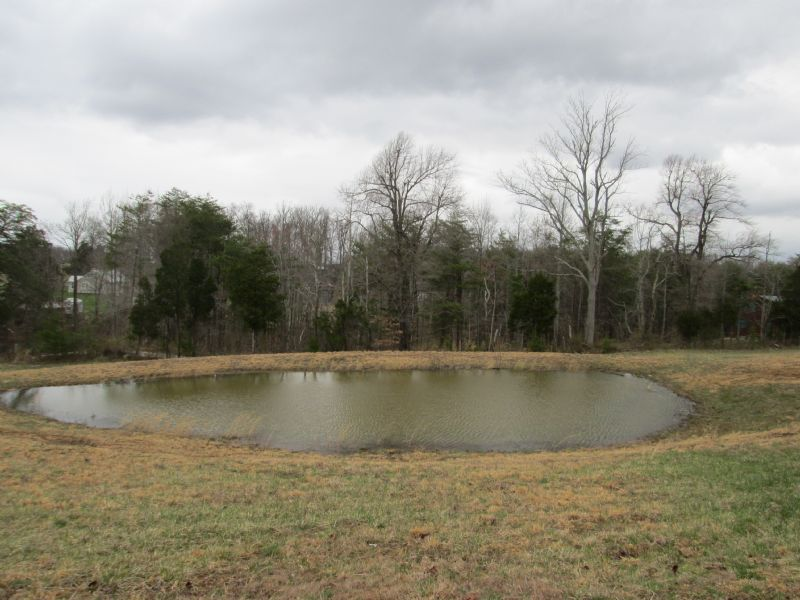 11.3 Acre Woods And Home Site : Munfordville : Hart County : Kentucky