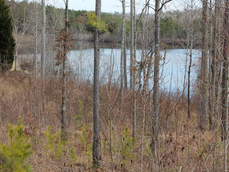 Online Only Auction: Lakefront Lot : Carrollton : Carroll County : Georgia