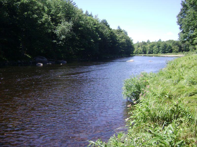 20 Acres With Adironack Waterfront : Ohio : Herkimer County : New York
