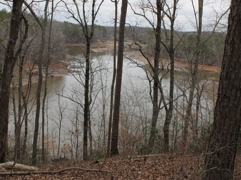 Online Only Auction / Lake Lot : Wedowee : Randolph County : Alabama