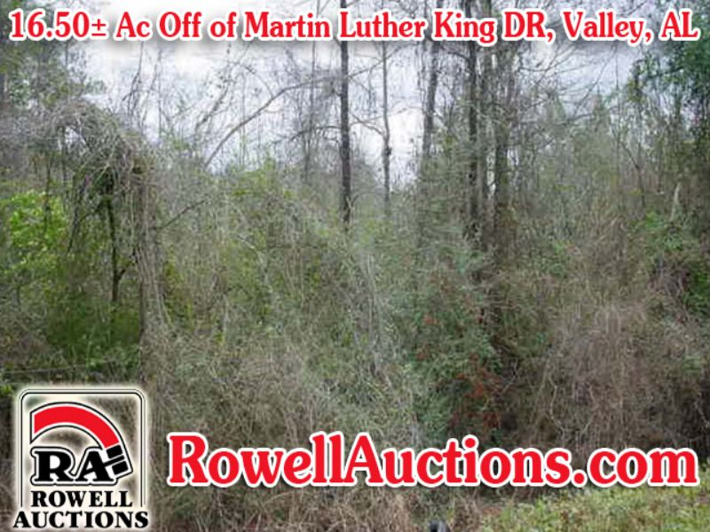 27 Residential & Commercial Proper : Valley : Chambers County : Alabama