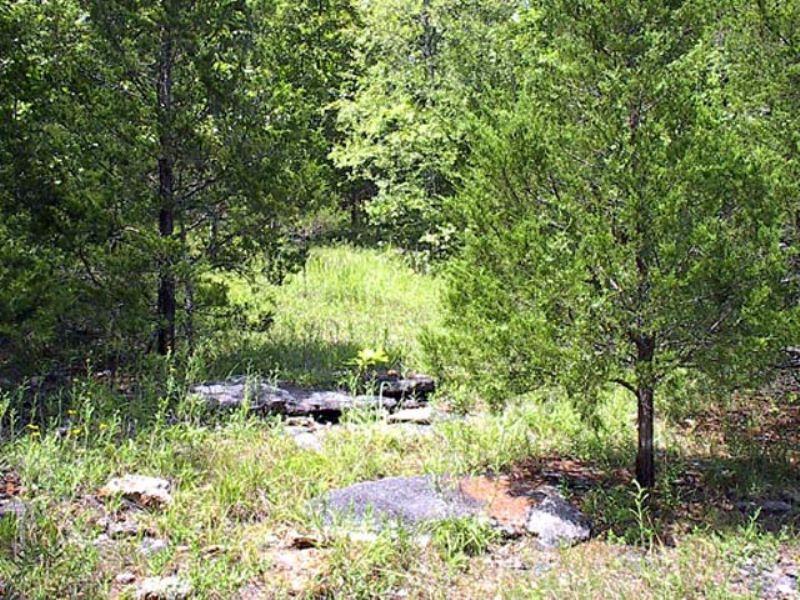 16 Acres With Small Creek - B : Genteryville : Douglas County : Missouri