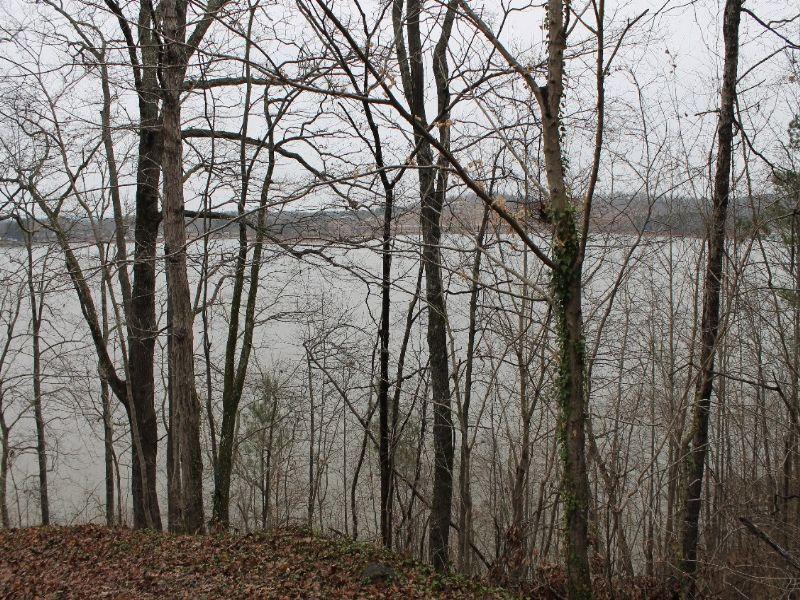 Online Auction - Lake Lot : Talladega : Talladega County : Alabama