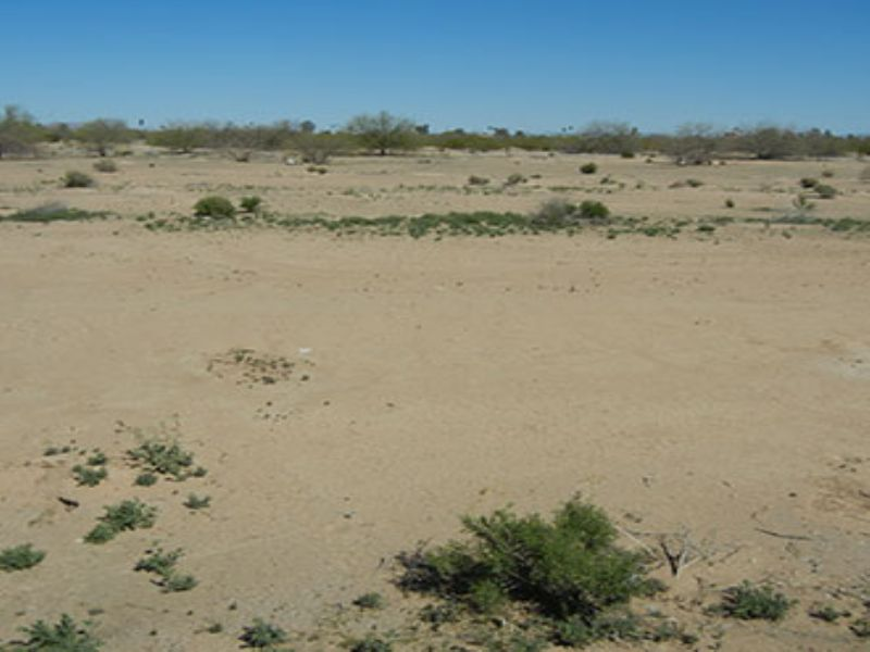 0.14 Acres Near Eloy : Eloy : Pinal County : Arizona
