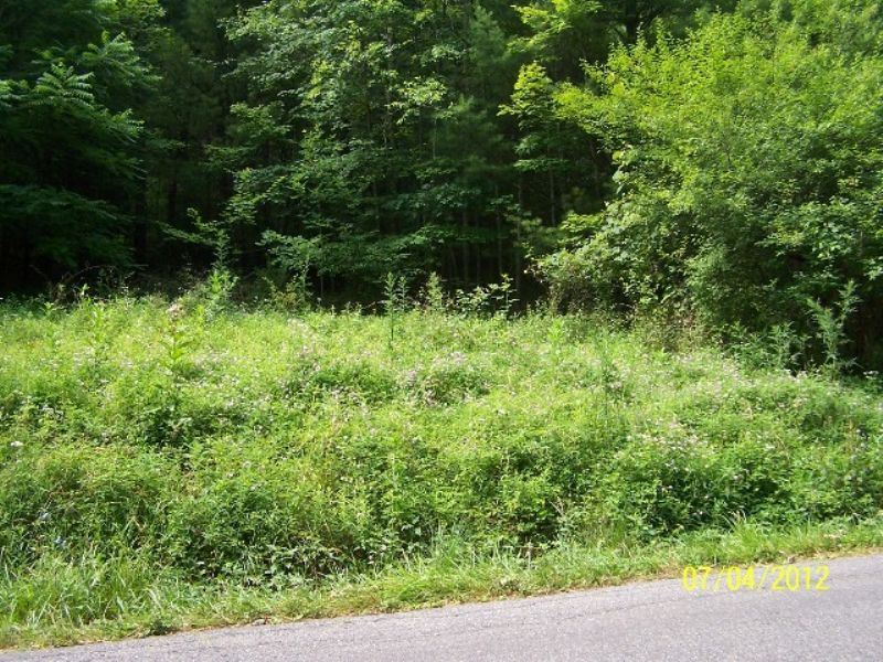 Small Tract Joining National Forest : Fries : Grayson County : Virginia
