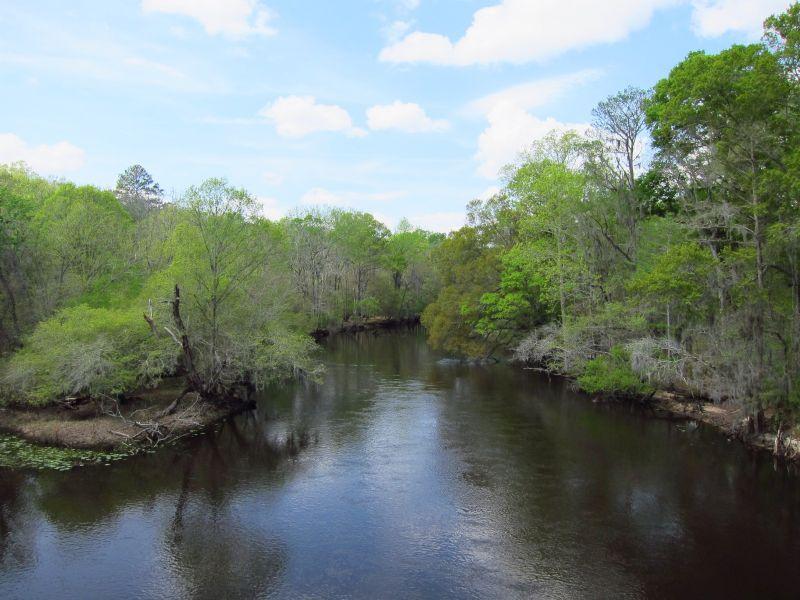 Ogeechee Bend : Brooklet : Bulloch County : Georgia