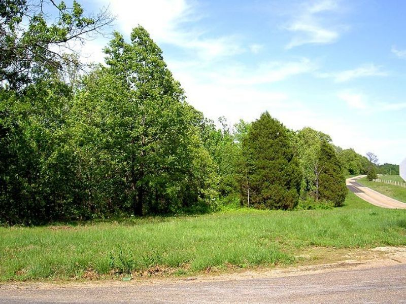 1.3 Acres Paved Road Nice Trees : Mountain View : Howell County : Missouri