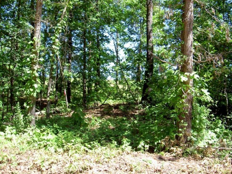 1.2 Acres With Electric : Caufield : Howell County : Missouri