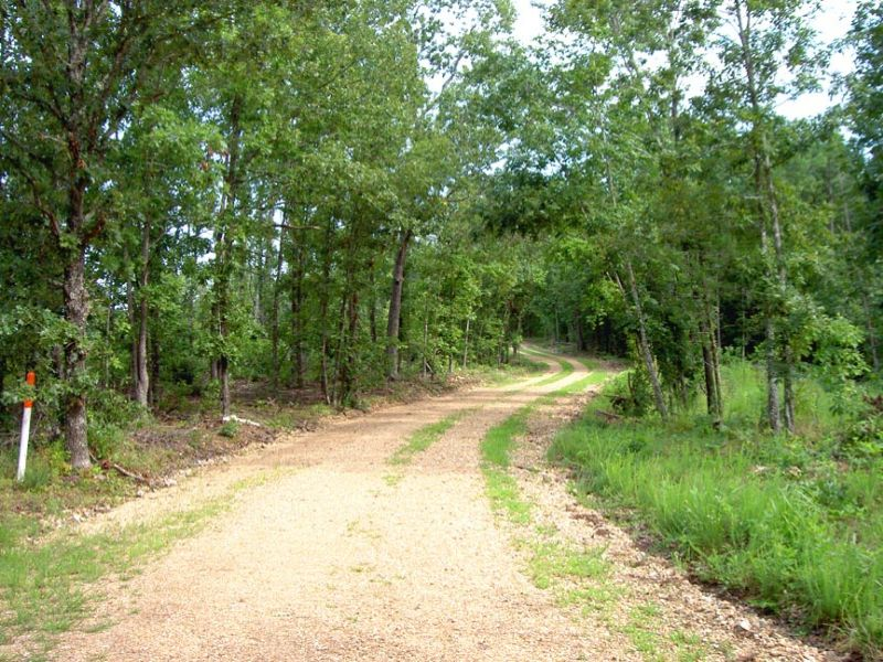 2.2 Acres Near Current River : Jadwin : Dent County : Missouri