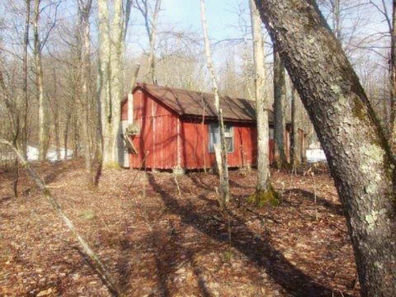 6+ Acres With Cabin : Florence : Oneida County : New York