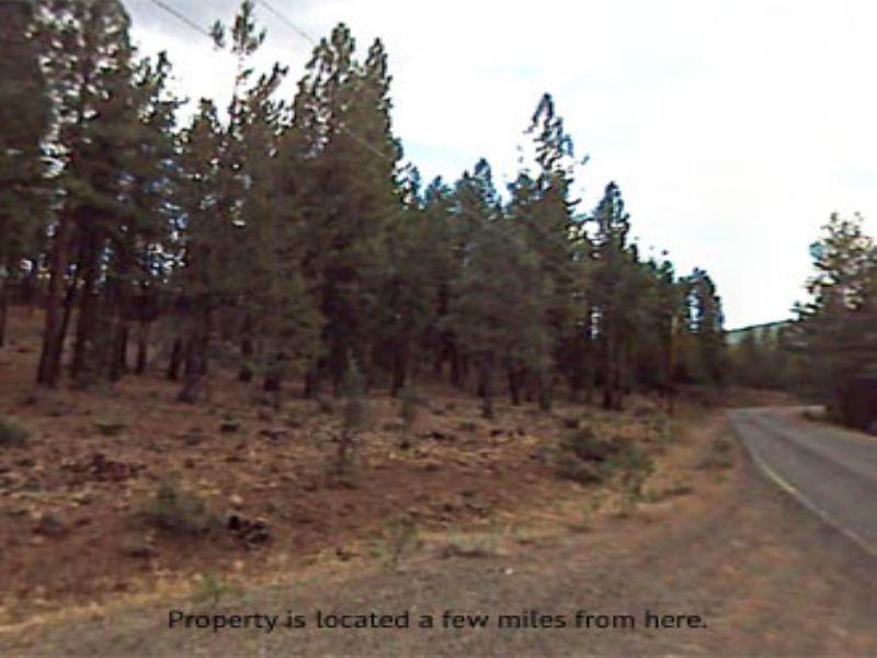 1.00 Acre Near Alturas : Alturas : Modoc County : California