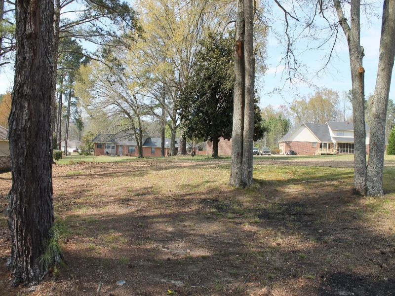 Online Only Auction Residential Lot : Southside : Etowah County : Alabama