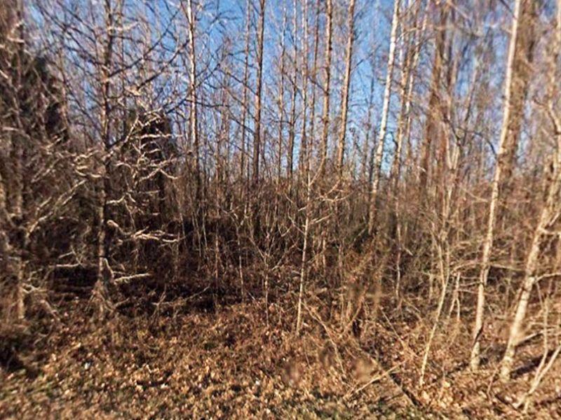 2.32 Acres: West Helena, Ar 72390 : West Helena : Phillips County : Arkansas