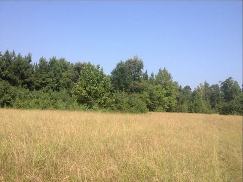 1 Acre: Emmet, Ar 71835 : Emmet : Hempstead County : Arkansas