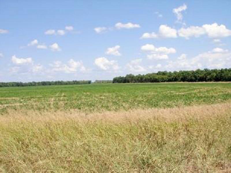 1 Acre: Mcgehee, Ar 71654 : Mcgehee : Desha County : Arkansas