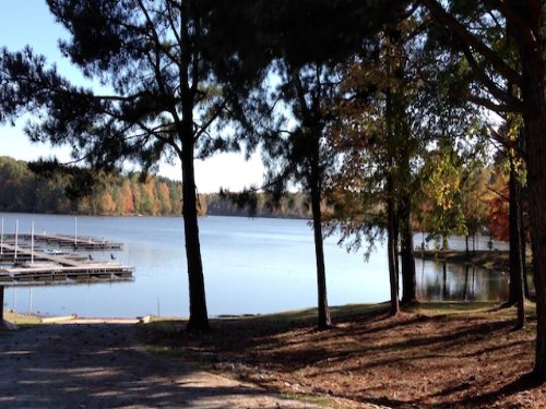 1.0 Acre Waterfront Lot 187 : Cedar Grove : Carroll County : Tennessee