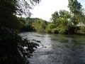 Toccoa River Access : Blue Ridge : Fannin County : Georgia
