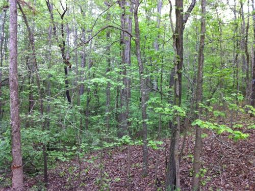 Bear Creek Farms - 2.69 Acre Lot : Mansfield : Jasper County : Georgia