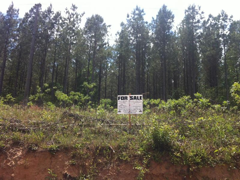 Greenfield Farms, 16.21 Acre Lot : Manchester : Coffee County : Tennessee