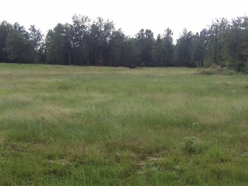 Huck Finn Farms, 5.06 Acre Lot : Batesburg : Aiken County : South Carolina