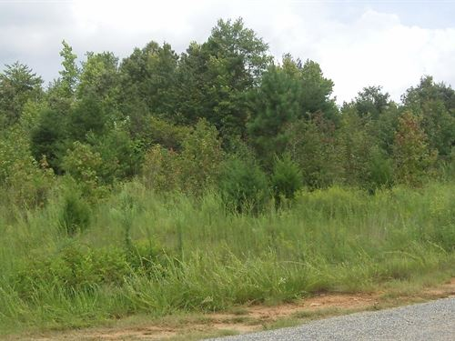 Ivy Plantation - 1.14 Acre Lot : Nicholson : Jackson County : Georgia