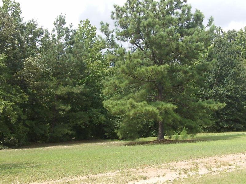 Oakley Estates, .50 Acre Lot : Hillsboro : Coffee County : Tennessee