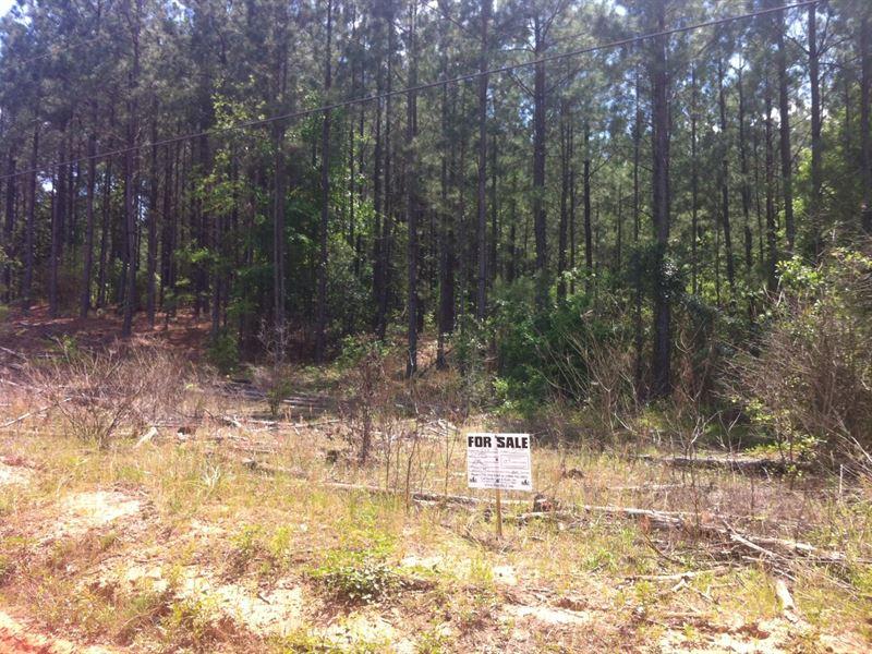 Riverbrooke Plantation, 2.38 Acre : Covington : Newton County : Georgia