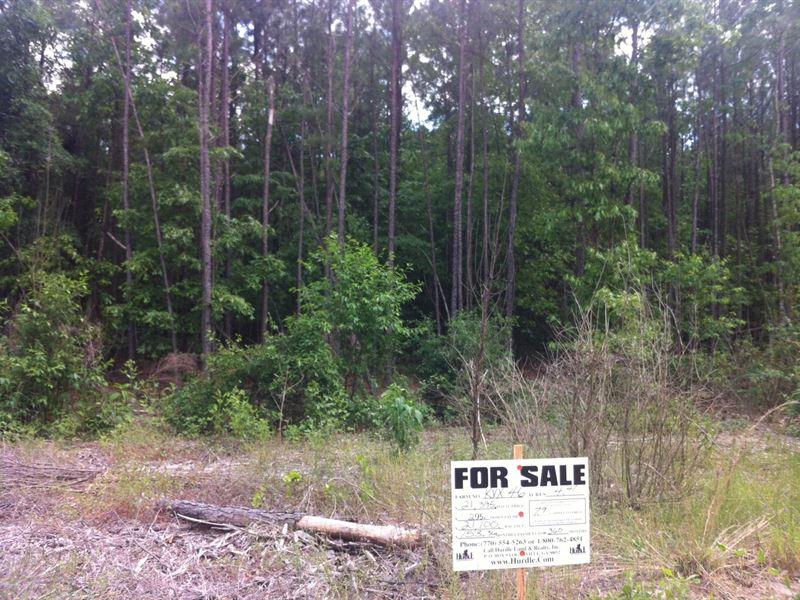 Sarah Hill Estates, 1.83 Acre Lot : Lizella : Crawford County : Georgia
