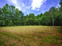 196 Chatham Business Dr, Pittsboro : Pittsboro : Chatham County : North Carolina