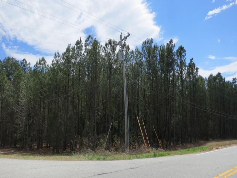Highway 56 Commercial Tract : Clinton : Laurens County : South Carolina