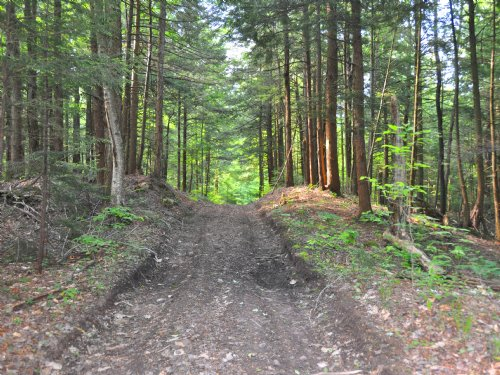 Use 9,761 Acres Of State Game Lands : Parish : Oswego County : New York