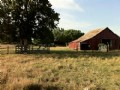 House On 13+ Acres (#12163378)