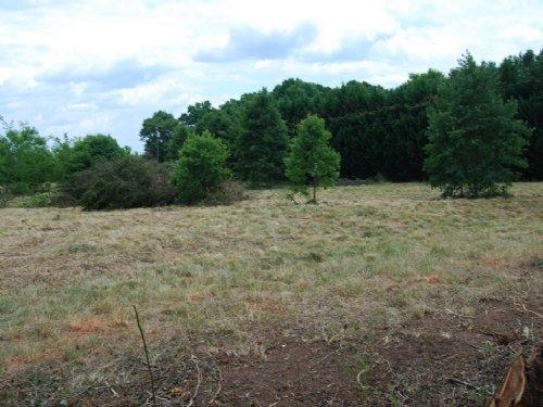 2.45 Acre Homesite In Cross Anchor : Cross Anchor : Spartanburg County : South Carolina