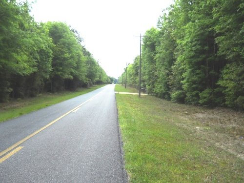 10 Acres Close To Peacock Springs : Live Oak : Suwannee County : Florida
