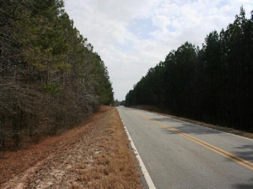 $495 Down, Owner Financed Land : Greensboro : Greene County : Georgia