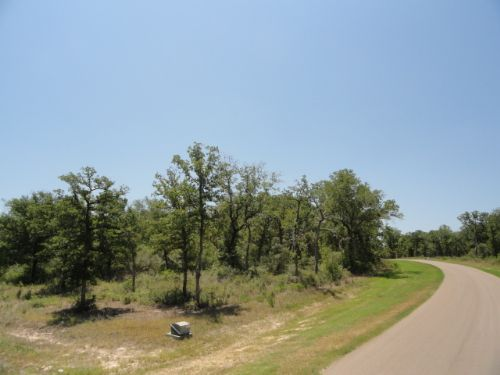 1 Acre Corner Lot With A View : Iola : Grimes County : Texas