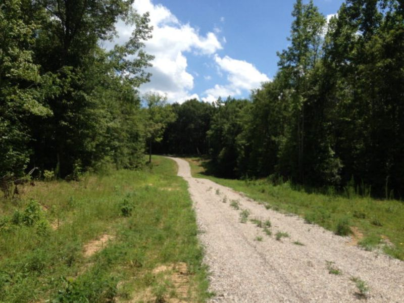 9.66 +/- Ac- Perfect For Building : Troy : Pike County : Alabama