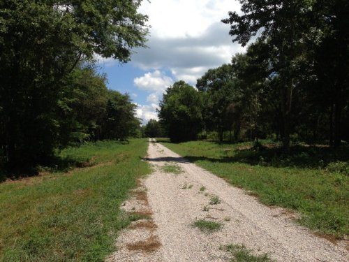 9.43 +/- Acres On Us Hwy 29 : Troy : Pike County : Alabama