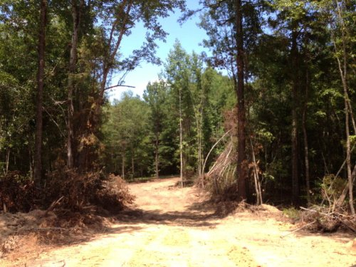 10.04 +/- Acre Homesite : Troy : Pike County : Alabama