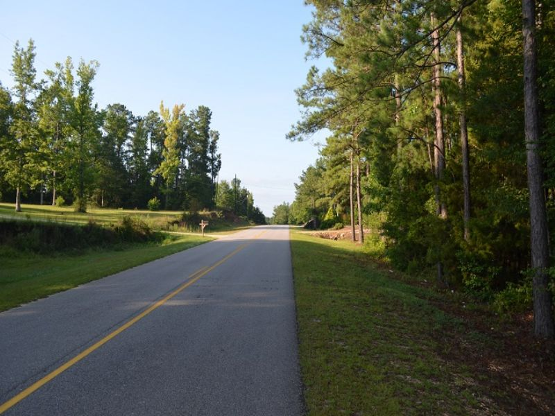 Large Home Site In The Auburn Area : Auburn : Lee County : Alabama