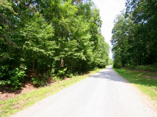 5.59 Acres In Beaverdam Community : Beaverdam : Hanover County : Virginia