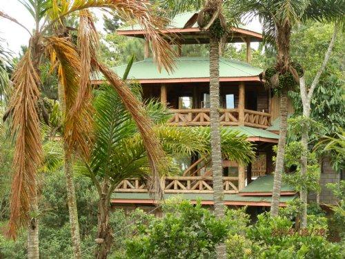 Small Organic Farm  W/ Log Cabin : Tucurrique De Cartago : Costa Rica